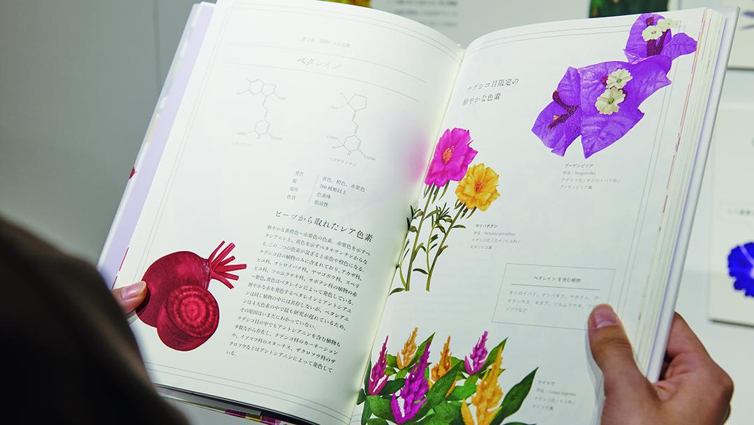 花の色のたくらみ